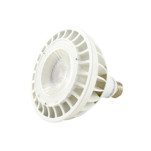 LED outdoor reflector PAR38 dimmable, 18W/120V 1400LM, White 6000K